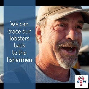 Buy Lobster Direct From Fishermen