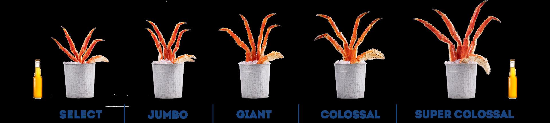 Crab Comparison Chart