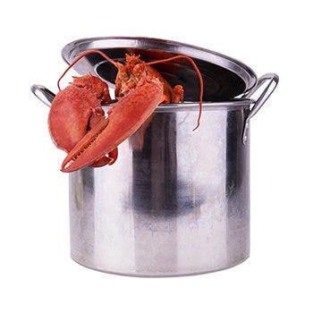 Lobster supplies you'll need