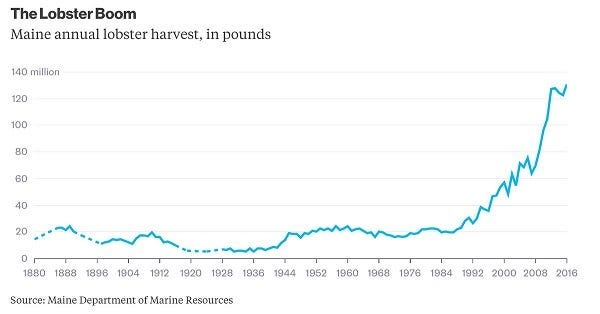 Lobster Harvest Annual Volume Growth Chart