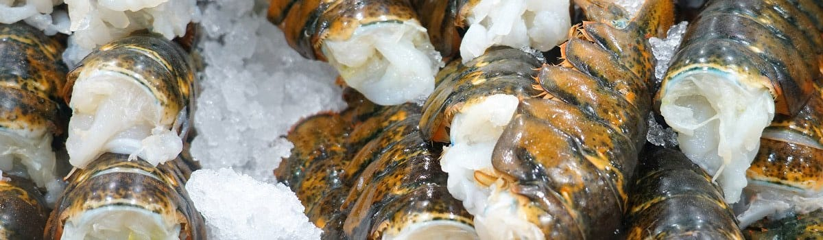 Wholesale Lobster Tails