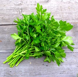 chopped fresh flat-leaf parsley, plus more for serving