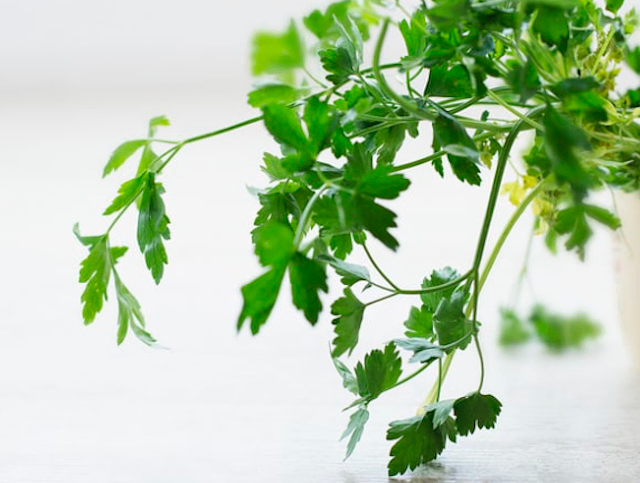 Chopped fresh flat-leaf parsley