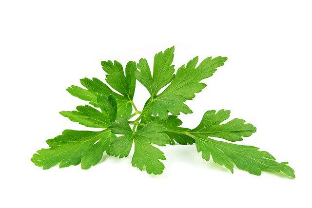 fresh chopped flat-leaf parsley