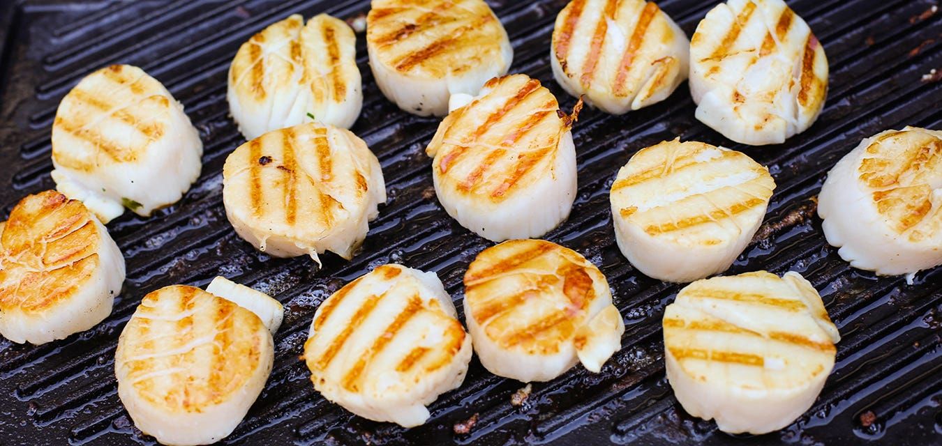 Quick Scallop Guide