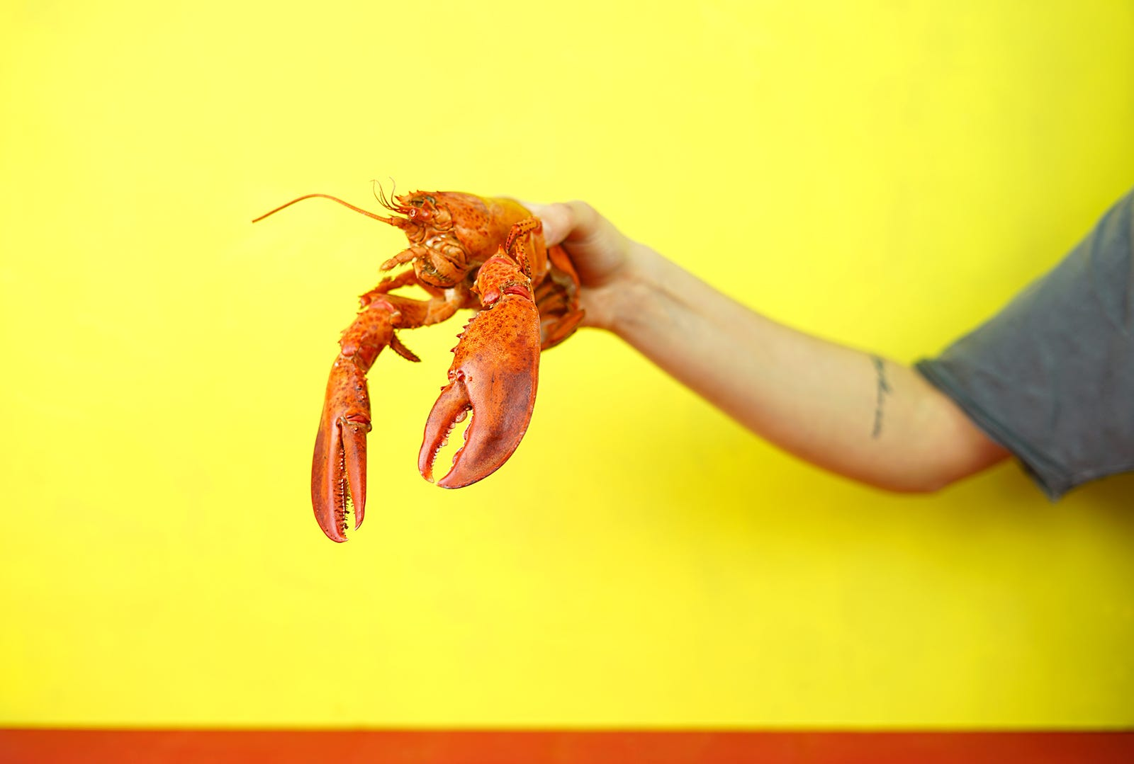 A Taste of Lobster History