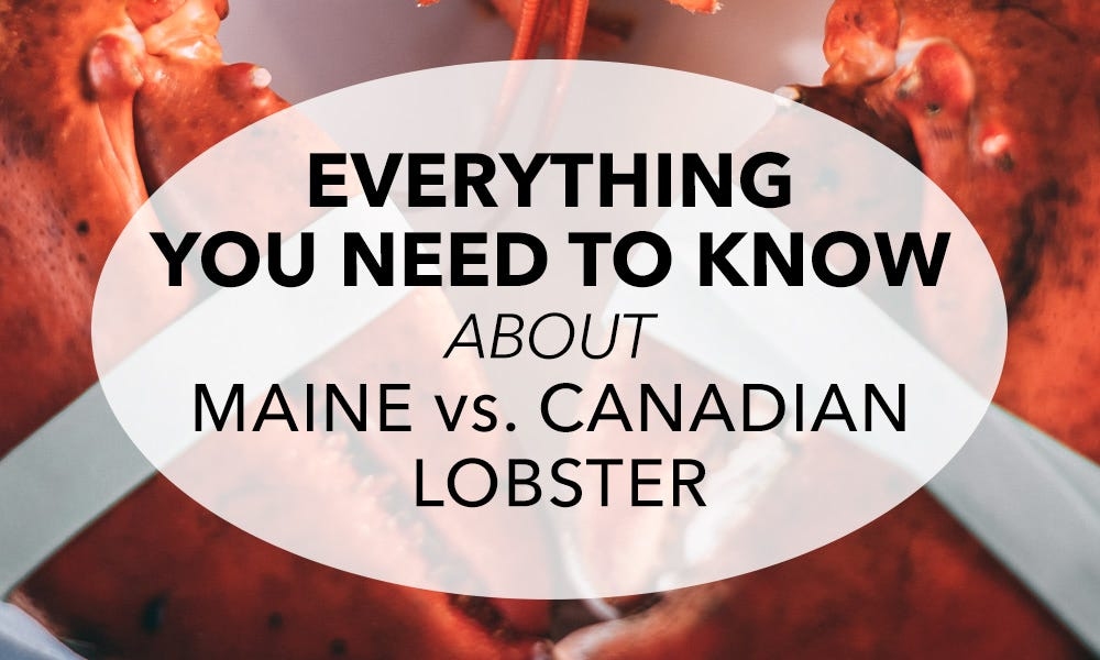 Everything You Need to Know About Maine vs. Canadian Lobster