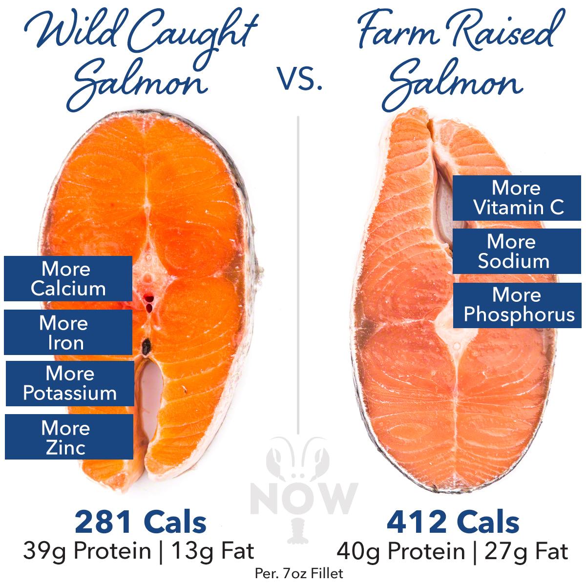Wild caught vs farm raised salmon