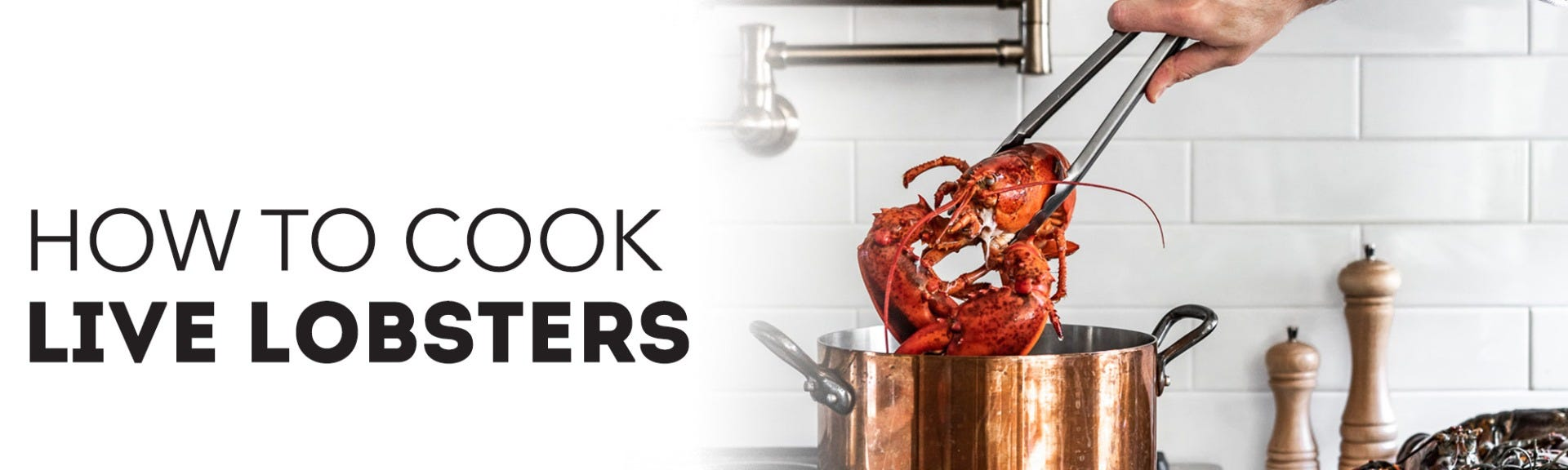 How to cook live lobsters