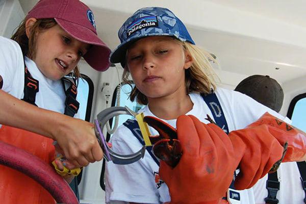 Lobster apprentice program