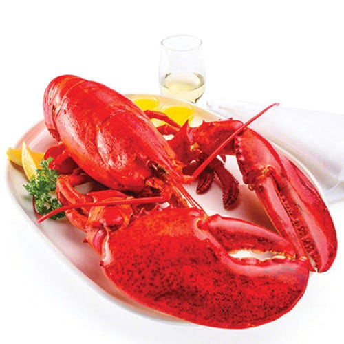 Order Jumbo Lobsters