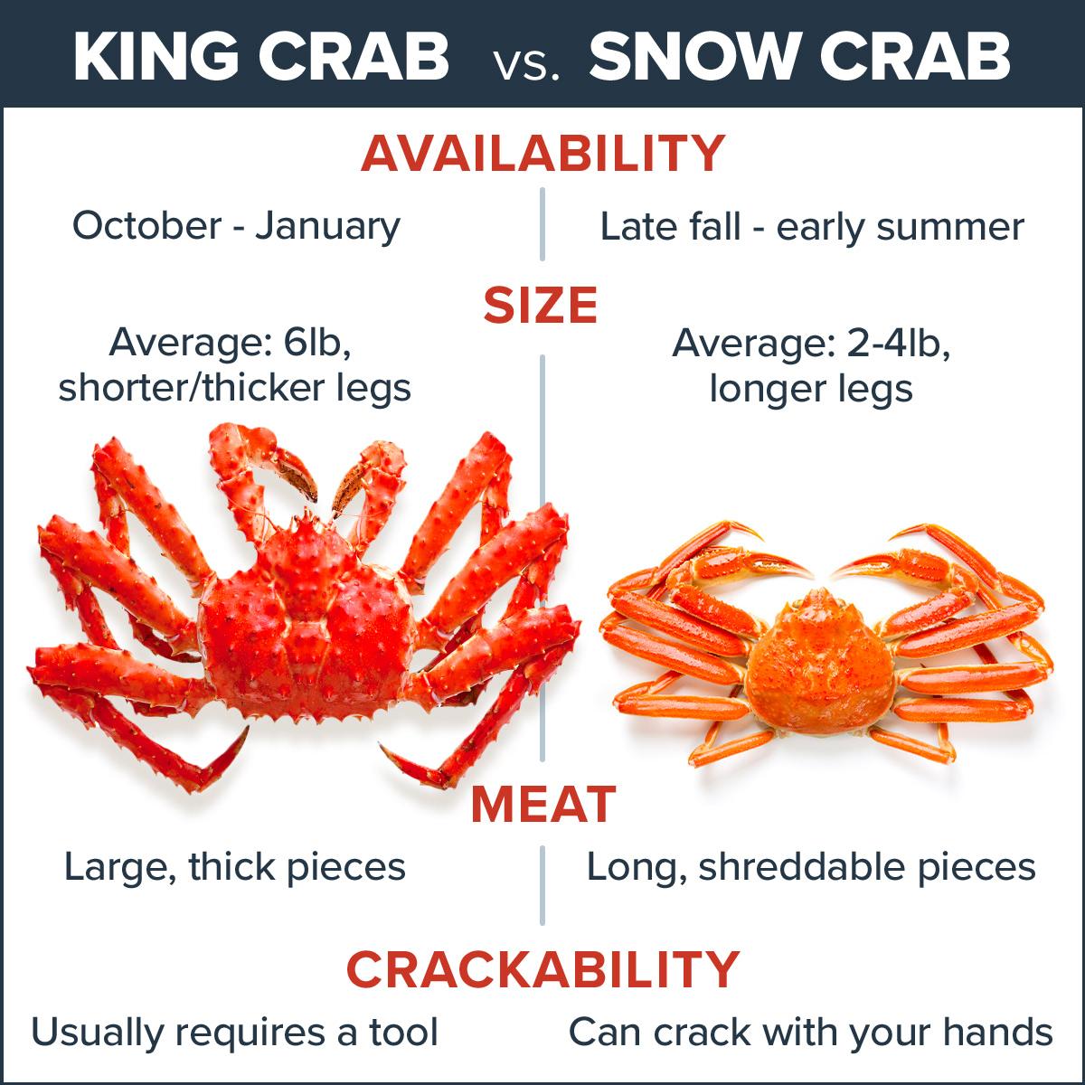 King Crab vs Snow Crab comparison